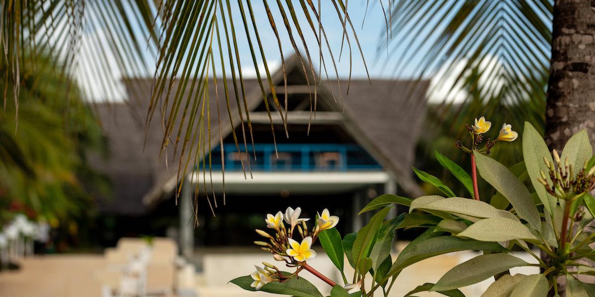 Fun Beach Hotel Garden