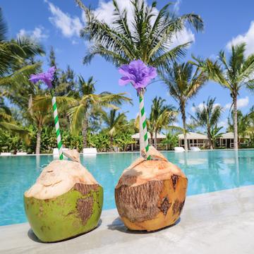 La Luna Suite Apartments swimming pool and coconuts